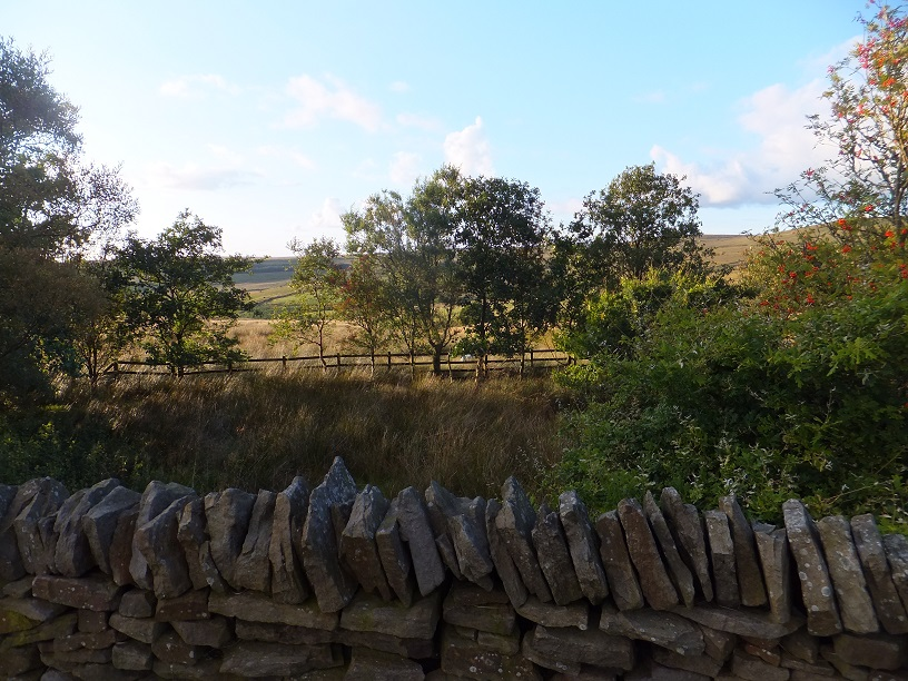 Views looking over the moors, was this an old field enclosure?