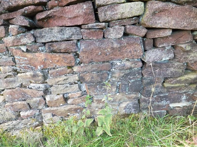 Some old brickwork.