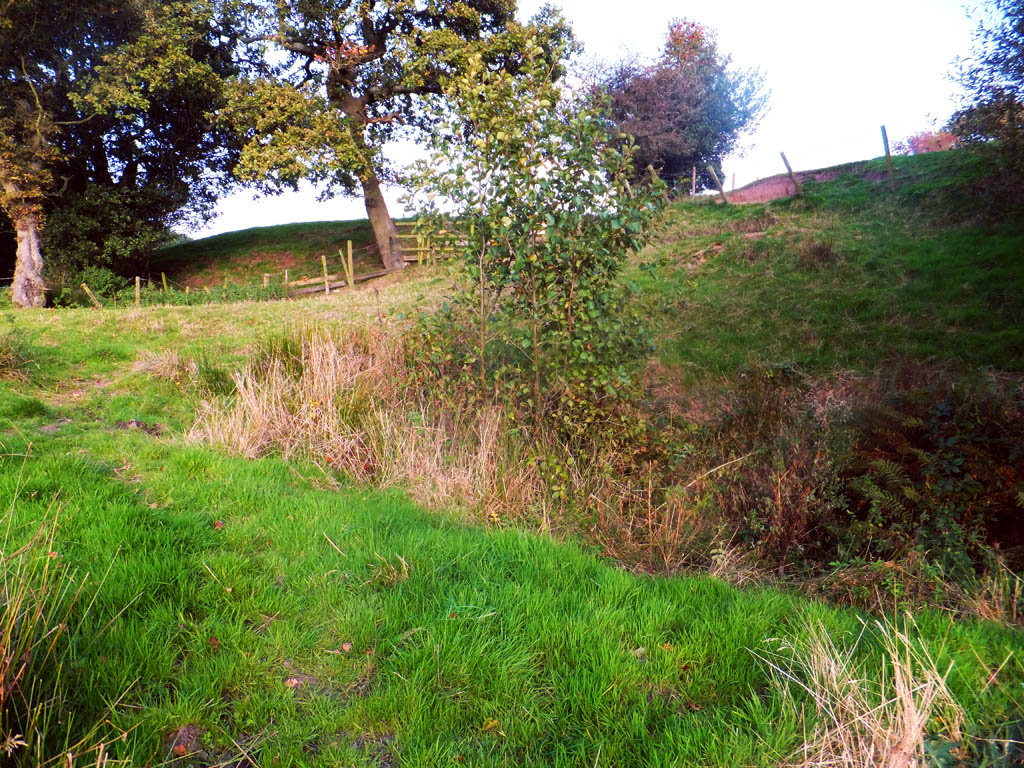 The small cutting in the centre of the picture is the fluctuating source of the brook.