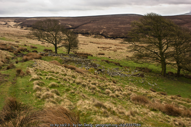 The source of Black Brook is by the ruins of Great Hill Farm.